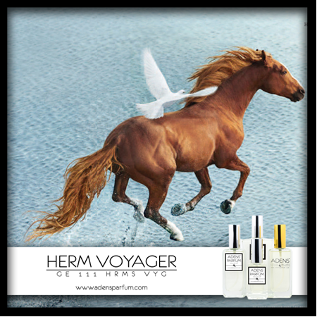 HERM VOYAGER